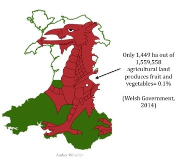 wales map just 0.1% fruit n veg