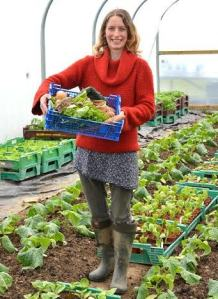 Growing vegetables for urban markets
