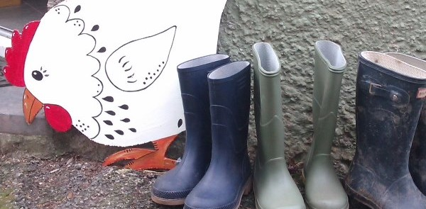Cutout hen and wellies